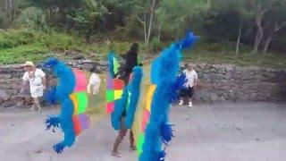 SABA Carnival 2014