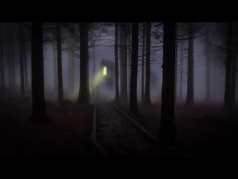 Adana Twins - Frozen feat. Digitaria (Original Mix)