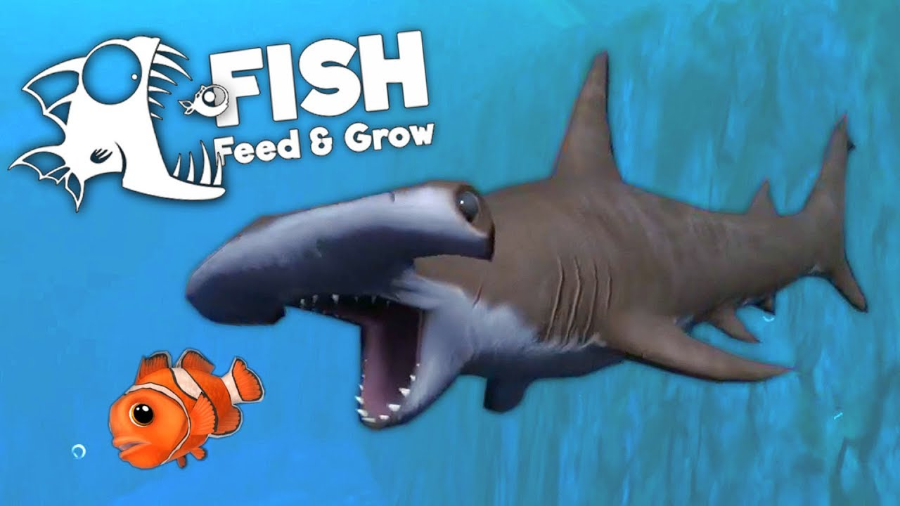 grow fish gameplay