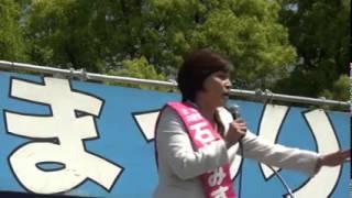 2014年5月11日、大阪市西淀川区西淀公園で開催された第19回西淀川赤旗ま...