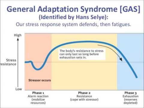 General Adaptation Syndrome (GAS), a Homework Jingle by Valerie Vivar