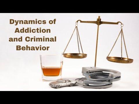 Dynamics of Addiction and Criminal Behavior