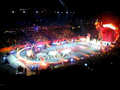 Ringling Bros. and Barnum & Bailey Circus Cleveland