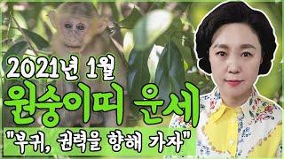[보리암]2021년 신축년 원숭이띠 1월 운세 (30세,42세,54세,66세,78세 운세) 원숭이띠 1월 총…