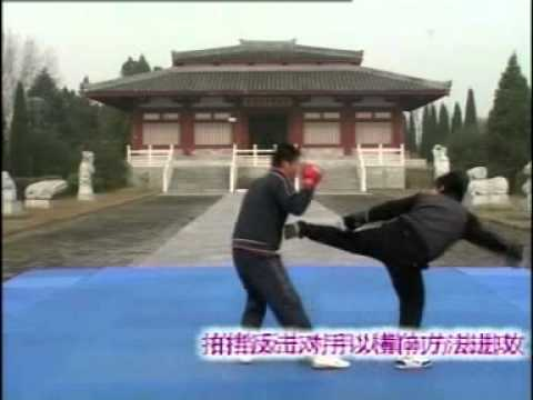 学习散打/散手- 散打教程/教学 1- Sanshou Tutorial 1 (Chinese Language).