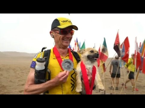 Stray dog follows extreme racer through desert