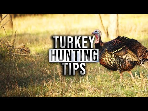 Crossbow Turkey Hunting Considerations