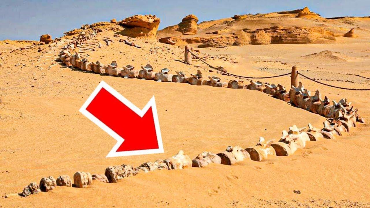 10 สิ่งสุดแปลกที่ถูกพบกลางทะเลทราย (เป็นไปได้ไง?)