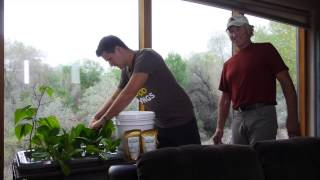 Mini-Farm Grow Box Incredible New Hydroponic Food Growing System - Sustainable Garden, No Electricity Needed!
