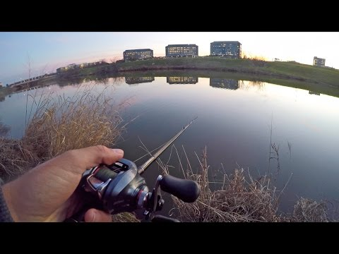 Bass Fishing in Down Town Dallas Texas