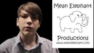 Mean Elephant Shirts official advertisement
