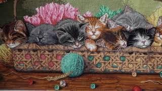 """Котята в корзине  СП """" Мой любимый Дименшенс"""" Завершение!"""
