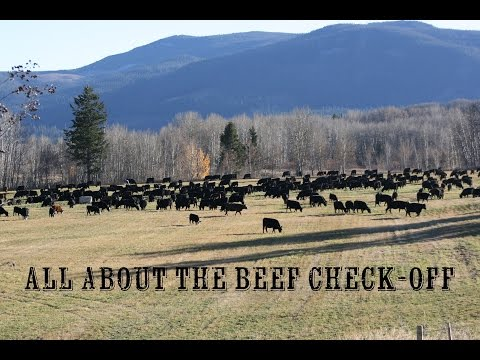 "Cattle Industry Development Council ""ALL ABOUT THE CHECK-OFF"""