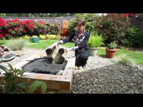 HOW WE BUILT A WATER FEATURE FOR OUR HUMMINGBIRDS