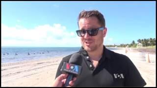 Diplomats Pick Up Trash at a Miami Beach