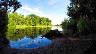 Gopro Hero 4. Border Terrier Trip To Clumber Park