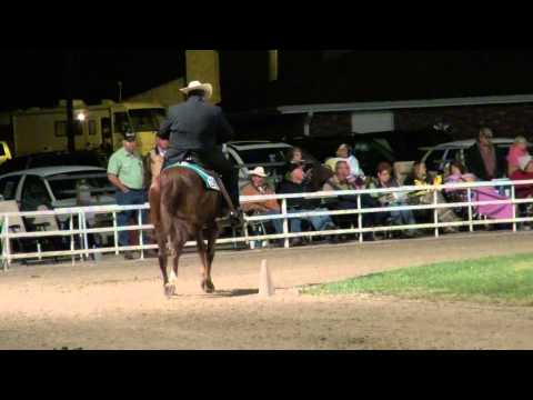 Ava 2012 Missouri Foxtrotter 4 Years Open World Grand Championship