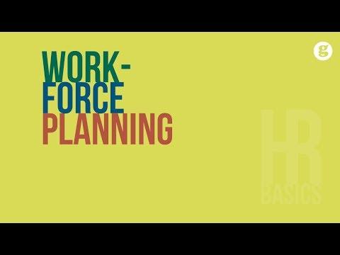 HR Basics: Workforce