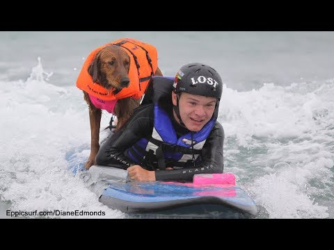 Surfing dog teaches disabled kids to surf!