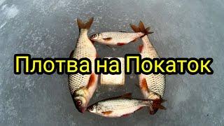 ЗИМНЯЯ рыбалка на ПОКАТОК 2021г река ДОН