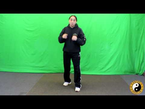 Kung Fu Training |  Footwork Stances Explained | Cat Stance | Bow And Arrow Stance | Horse Stance
