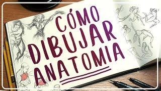 -cmo-dibujar-anatoma-consejos-y-trucos-mili-koey