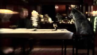 Смотреть клип The Moth & The Flame - How We Woke Up