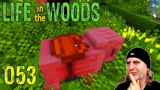 Minecraft [053] [Sattel + Schwein - Lauf du Sau!] [Life in the Woods] Deutsch German thumbnail