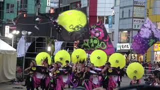 dance company REIKA組★準大賞@2018 東京よさこい