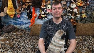 видео Какой аквариум выбрать – какие бывают виды аквариумов