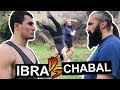 IBRA vs CHABAL