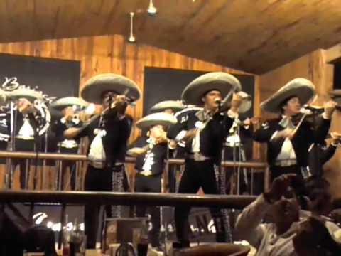 Viva el mariachi-Negrita de mis pesares