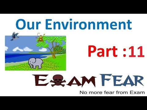 Biology Our Environment part 11 (Solid waste disposal: Biodegradable) CBSE class 10 X