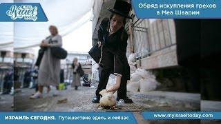 Видеоблог: Капарот (обряд искупления грехов) в Меа Шеарим