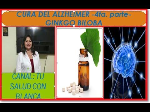 Propriétés Ginkgo Biloba - Booster sa concentration et sa mémoire en période d'examens