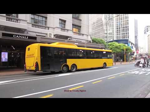 Buses in Wellington, New Zealand 2017