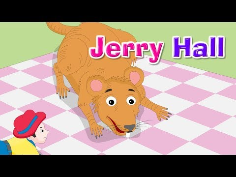Jerry Hall  Popular Kids  and Nursery Rhymes  Kidda TV For Children