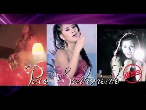 DIAS FELICES - Puro Sentimiento Remix  2016 HD Dj Leo