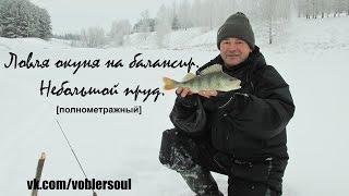 Ловля окуня зимой. С балансиром в коряжнике. Видео отчет декабрь 2014.