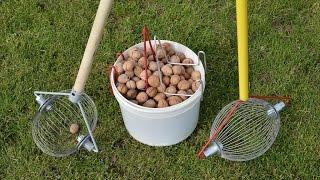 как быстро собрать грецкий орех? Ролл инструмент для сбора грецкого ореха