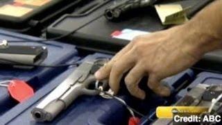 Senators Try to Bring New Life to Gun Control Efforts