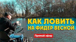 Как ловить на ФИДЕР весной. Онлайн семинар по фидерной ловле. Рыбалка на фидер 2021