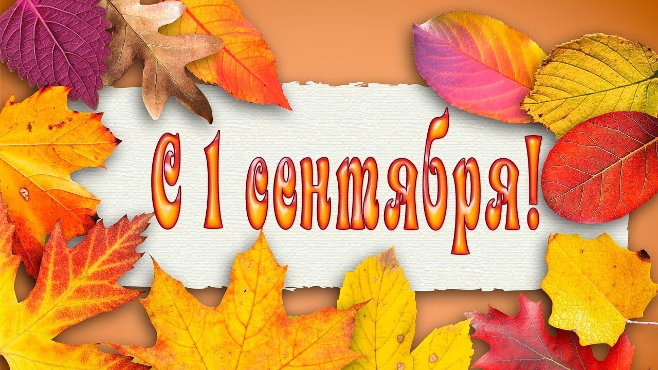Видео поздравление с 1 сентября 152