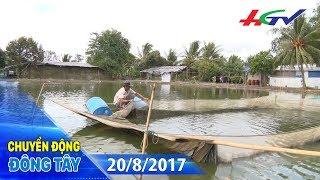 Vuông cá bốn tầng | CHUYỂN ĐỘNG ĐÔNG TÂY - 20/8/2017
