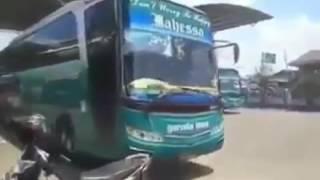 suara klakson bus legenda yang tren kembali (versi dangdut)