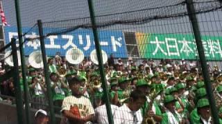 第91回高校野球選手権大会 東農大二-立正大淞南 東農大二アルプスの応援風景です。
