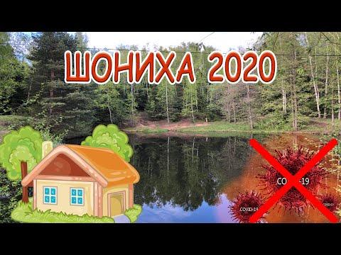ШОНИХА ПРОТИВ КОРОНАВИРУСА! ПЕРВЫЙ ОТДЫХ 2020