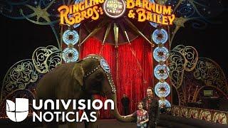 El tradicional circo Ringling Brothers cerrará para siempre a partir de mayo
