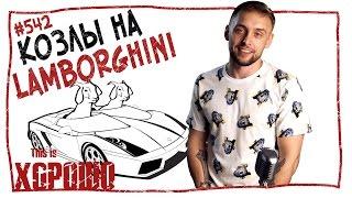 This is Хорошо - Козлы на Lamborghini. #542