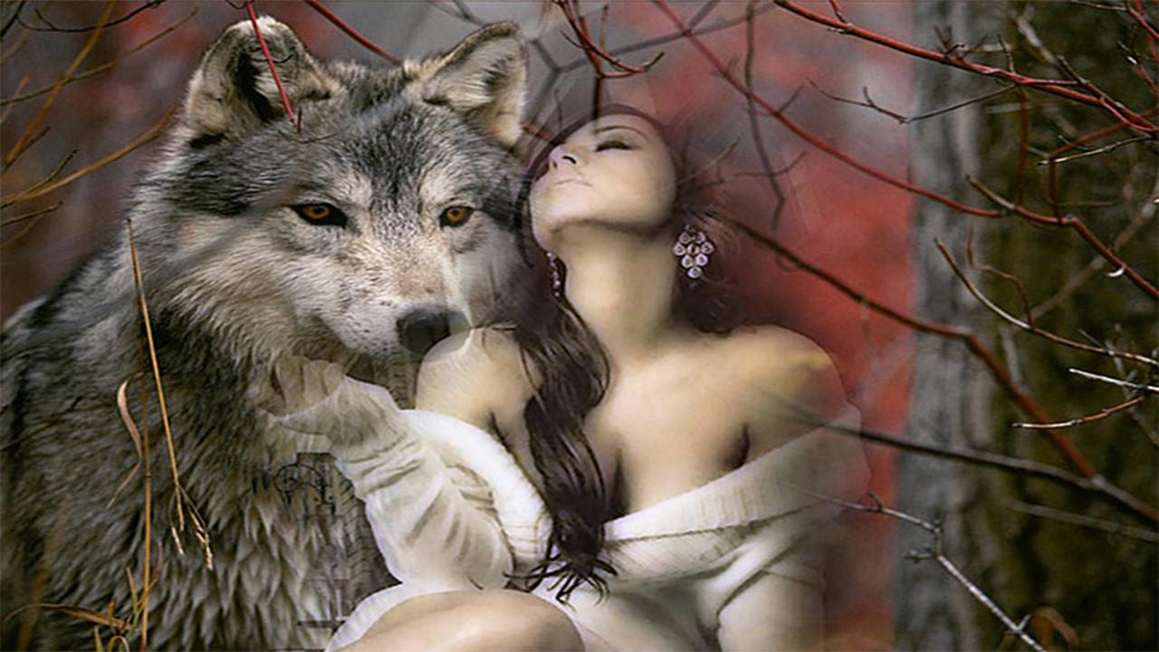 волк защищает волчицу картинки с надписью уже стала